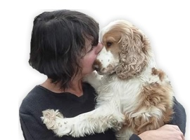 Love Dogs Eileen West